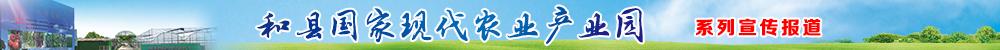 和縣國家現(xian)代農業產業園(yuan)