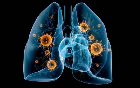 全国累计报告新型冠状病毒肺炎1287例图片